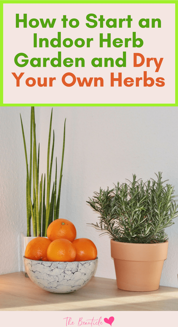 How to start an indoor herb garden and how to dry herbs. List of herbs to grow indoors for cooking and herbs for medicinal purposes