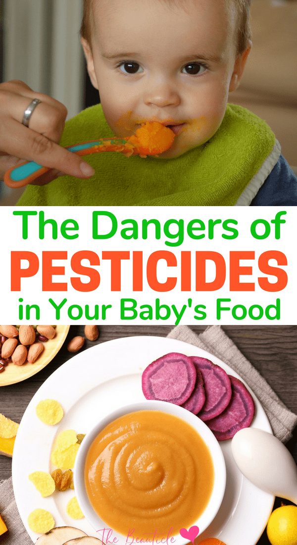 Do you know all the dangers possibly creeping around as pesticides in baby food? Protect your family from these health risks b learning about the pesticides in food, why you should go organic and the food on the clean list that are OK to buy without worry